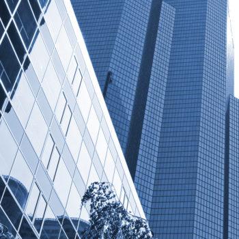 Experts Agami Corporate patrimoine privé - comité d'experts